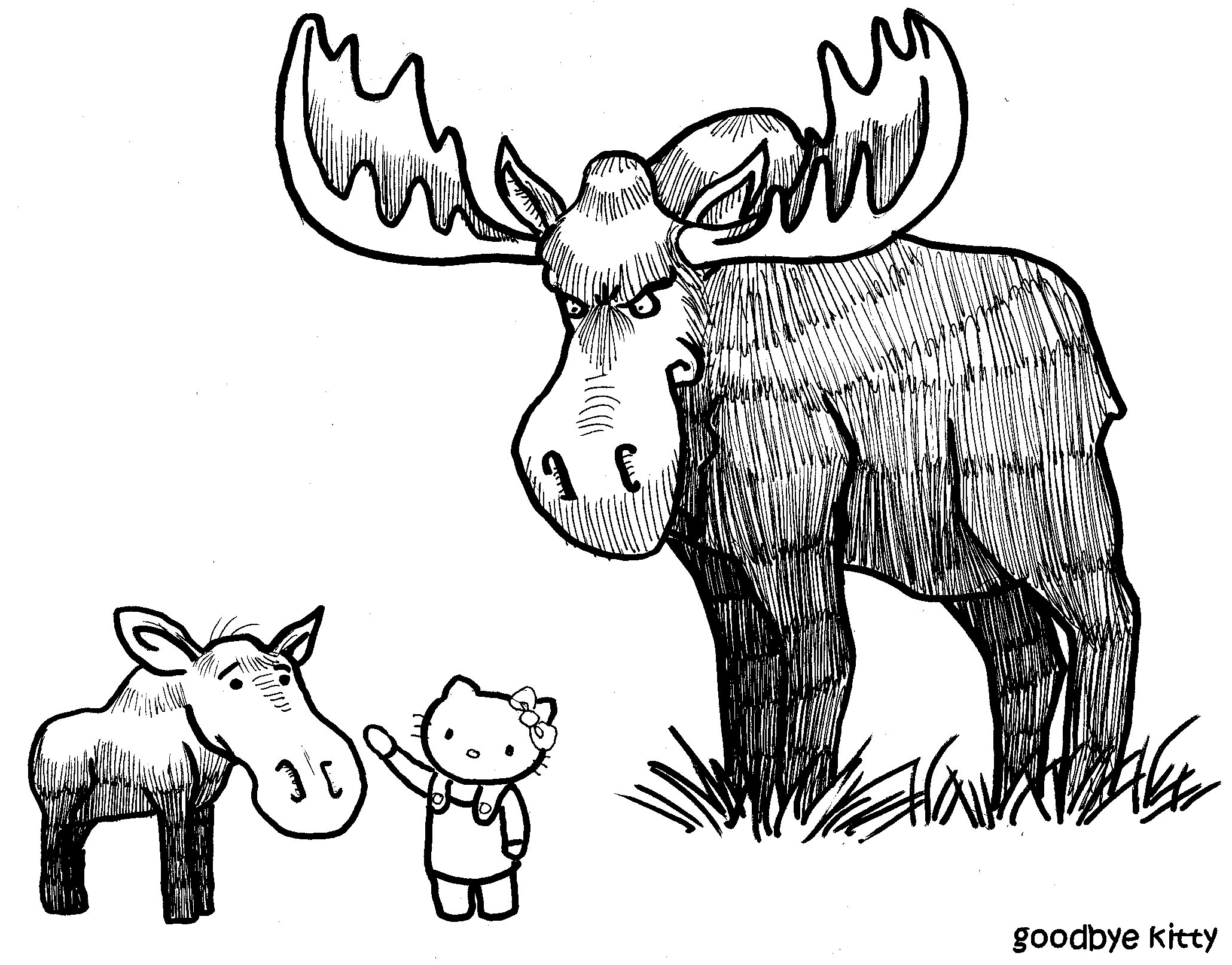 Enter The Moose (GBK#109)
